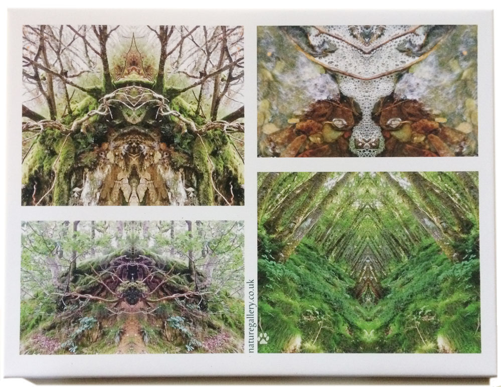 Nature Gallery Canvas Prints